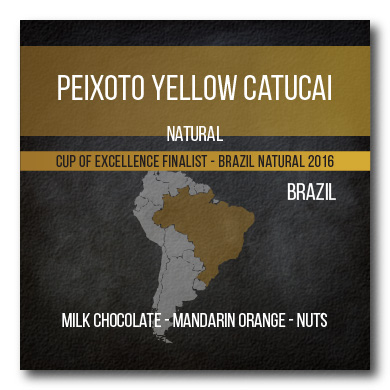 Peixoto Yellow Catucai