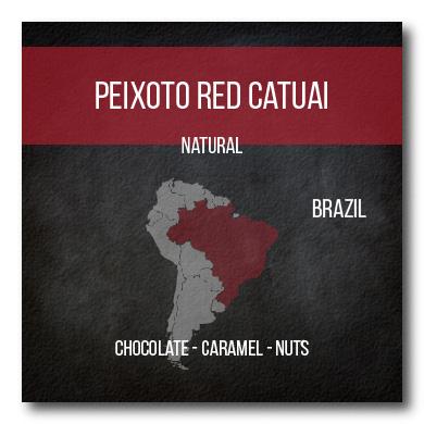 Peixoto Red Catuai